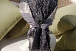 105-TS-noir-aile-de-corbeau-arrière